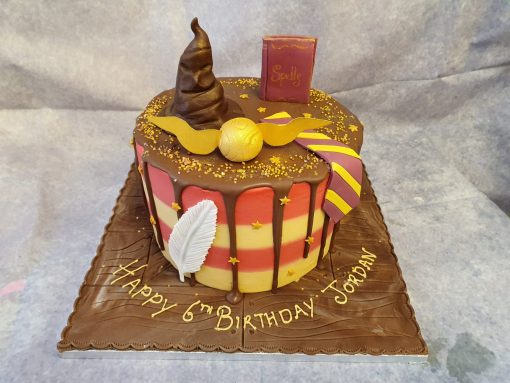 harry potter theme drip cake